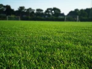 Stormige middag: FC Schadewijk wint met 3-0